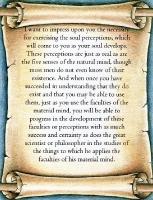 Using the Soul Perceptions